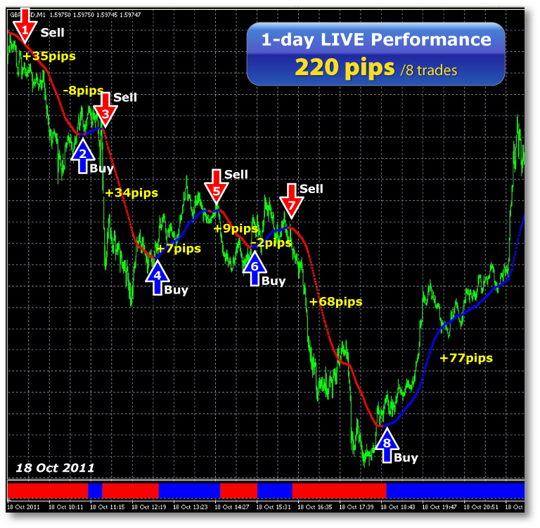 Live forex scalping room