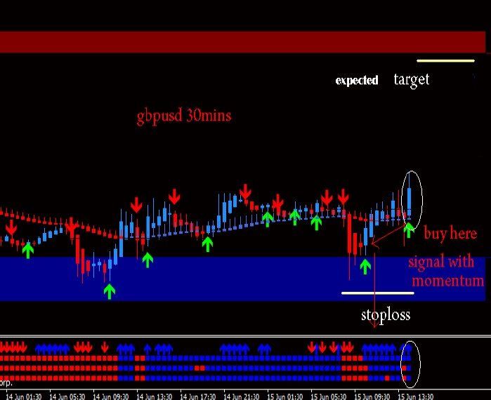 spat forex system