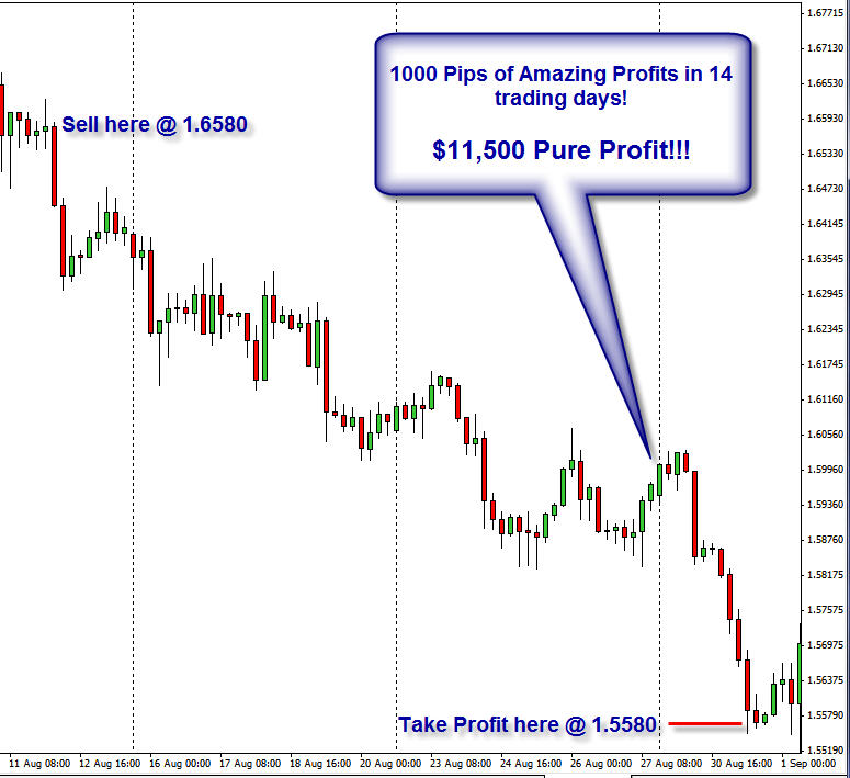 Forex swing trading system